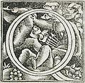 Fourteen Ornamental Letters (C, D, I, Q) LACMA 53.31.2.1a-n (7 of 14).jpg