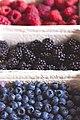 Fresh bio blackberry, blueberry, strawberry (28757740437).jpg