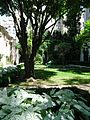 Frick Museum garden seen through gated fence.jpg