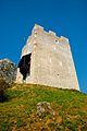 Friderikov stolp od spodaj.jpg