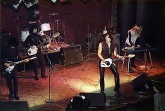 The Fuzztones - Image: Fuzztones 1984 Irving Plaza, New York City on Stage