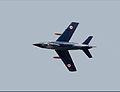 G.91 in volo.jpg
