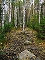 G. Zlatoust, Chelyabinskaya oblast', Russia - panoramio (28).jpg
