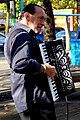 Gallic accordionist (6241401367).jpg