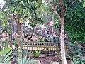 Garden of the Immortals 4.jpg