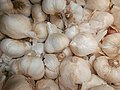 Garlic in a pile.jpg
