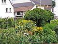 Garten mit Gartenlaube in der Ortsmitte.jpg