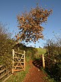 Gateway, countryside walk - geograph.org.uk - 1063046.jpg