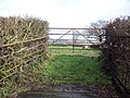 Gateway off Green Lane - geograph.org.uk - 335802.jpg