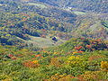Germany-valley-fall-north-fork-mountain - West Virginia - ForestWander.jpg