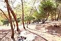 Ghamadan - panoramio (3).jpg