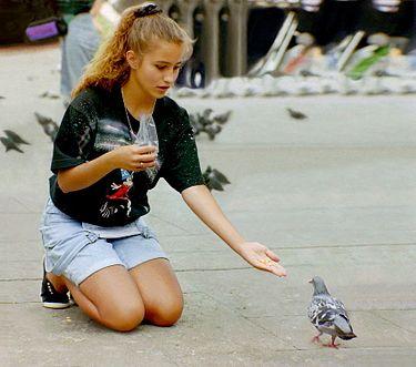 Girl + - Wikipedia