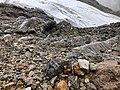 Glacier Huaytapallana-37.jpg
