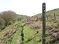 Glyndŵr's Way beside Llyn Clywedog - geograph.org.uk - 787802.jpg