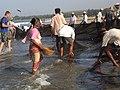 Goa fishing (942697809).jpg