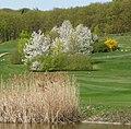Golfplatz - panoramio (25).jpg