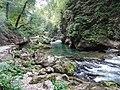 Gorges de Vintgar, Eslovènia (agost 2013) - panoramio (2).jpg