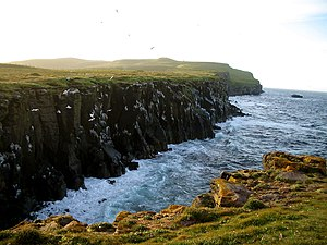 Grímsey - Cliffs at the island of Grímsey.