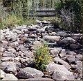 Grand Lake, CO Rapids 8-29-12 (8109805754).jpg