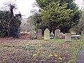 Gravestones and Crocus Flowers, St James Church - geograph.org.uk - 333525.jpg