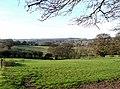 Grazing Land near Gospel End, Staffordshire - geograph.org.uk - 616333.jpg