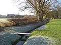 Green, Leinthall Earls - geograph.org.uk - 640769.jpg