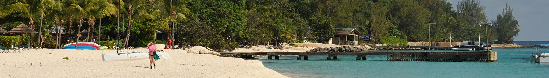 Grenadines banner Palm Island beach.jpg