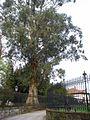 Guernica - Parque de los Pueblos de Europa 04.jpg