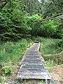 Gwaii Haanas National Park (26945854463).jpg
