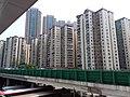 HK SSP 深水埗 Sham Shui Po 荔枝角 Lai Chi Kok Road near Mei Foo Sun Chuen February 2019 SSG 10.jpg