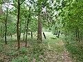 Hamont-Achel-Grafheuvels Boskerkhofweg (2).jpg