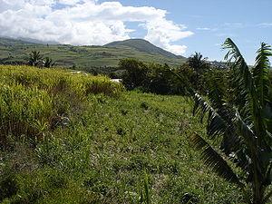 Saint-Joseph, Réunion - Image: Hauts Saint Joseph
