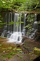 Haverdale Beck Falls - geograph.org.uk - 1544170.jpg