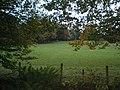 Hayton Lane End Woods.. - geograph.org.uk - 273500.jpg