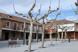 Herrera de Pisuerga 002 Detalle Plaza Mayor.JPG