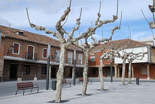 Эррера-де-Писуэрга,  Кастилия и Леон, Испания
