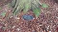 Hillsborough Castle - Tree planting plaque, Duke of Abercorn, 1925.jpg