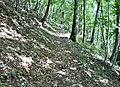 Hinterer Wielandstein Richtung Lenningen - panoramio.jpg