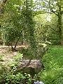 Hinton Park, Shears Brook - geograph.org.uk - 1295309.jpg