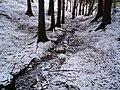 Hluboký potok u Litoboře 2.JPG