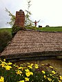 Hobbiton, The Shires, Middle-Earth, Matamata, New Zealand - panoramio (4).jpg