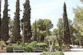 Holy Land 2016 P0053 Roman Catholic Shepherds Field Chapel gardens.jpg