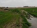 Hondeghem.- Les Monts de Flandre - Plaine de la Lys (4).jpg