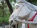 Horse at bai ma si.jpg