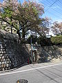 Hoshizaki Castle 012.JPG