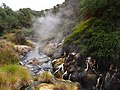 Hot Stream in Waimangu Volcanic Valley - 2013.04 - panoramio.jpg