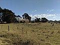 House in Charleyong or Marlowe, New South Wales.jpg