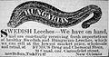 Hungarian Leeches New Orleans 1852.jpg