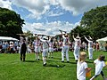 "Hursley ""Morris Men"" - geograph.org.uk - 1540958.jpg"