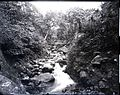 Iao Valley, (02), photograph by Brother Bertram.jpg